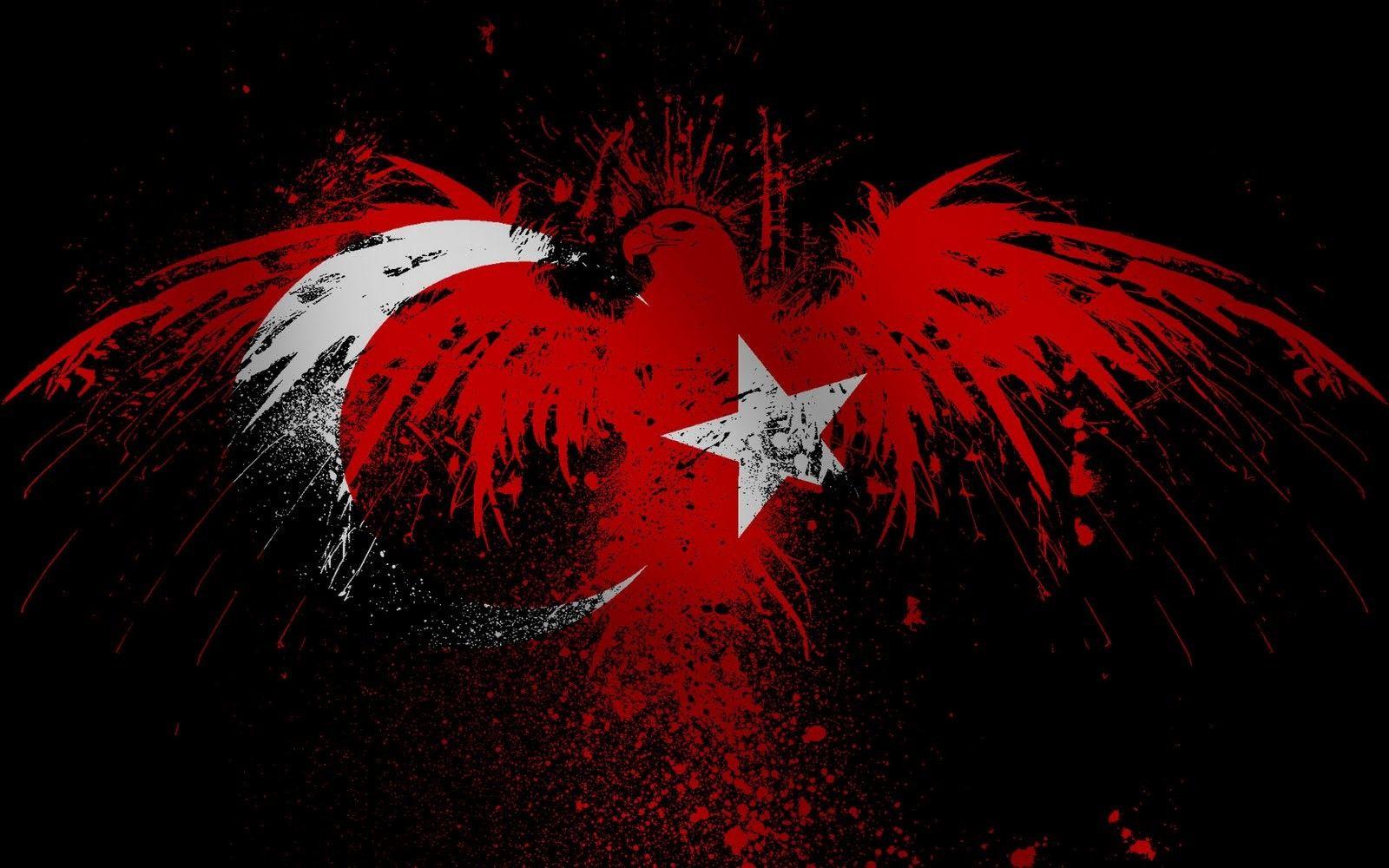 17x255 cm Türk Bayrağı