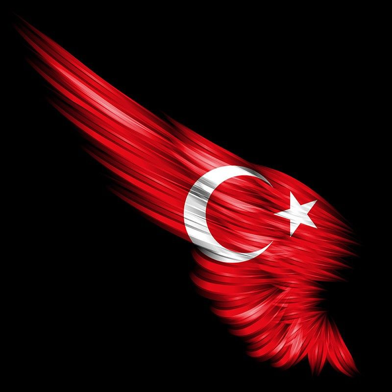 6x9 cm Türk Bayrağı