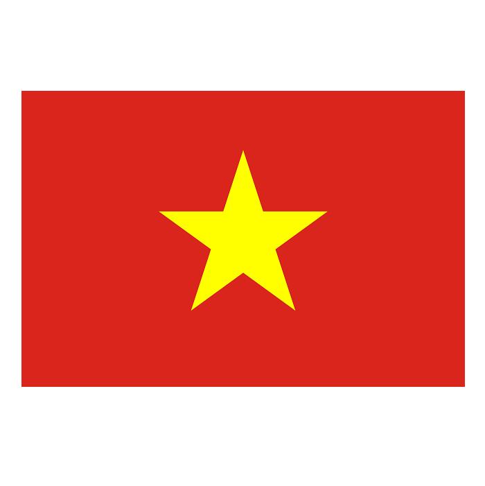 Vietnam Bayrağı